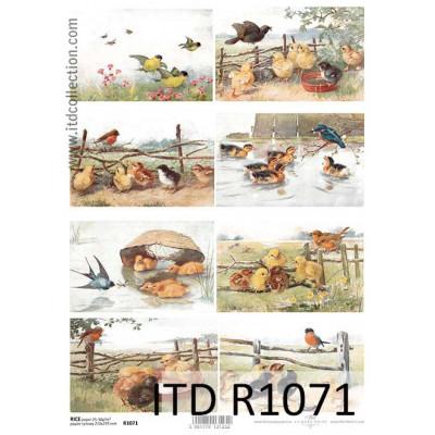 Бумага рисовая ITD A4 - R1071