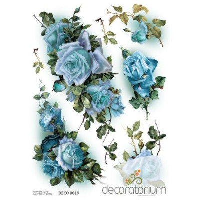 Decoratorium A4 - DECO0019
