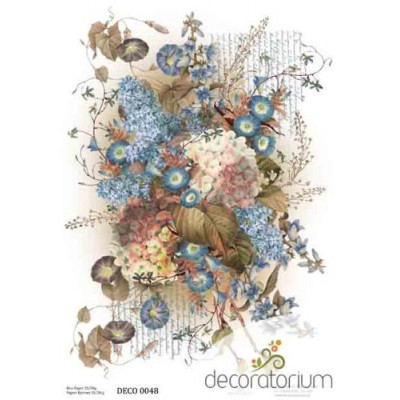 Decoratorium A4 - DECO0048