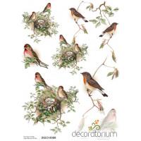 Decoratorium A4 - DECO0088