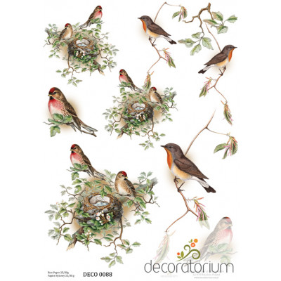 Decoratorium A4 - DECO0088