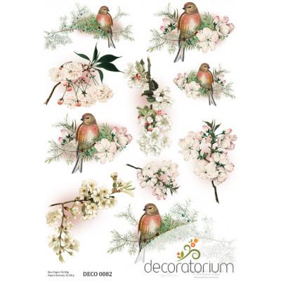 Decoratorium A4 - DECO0082
