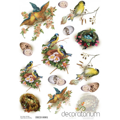 Decoratorium A4 - DECO0081
