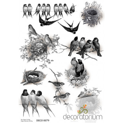 Decoratorium A4 - DECO0079