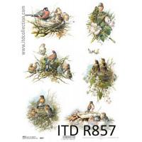 Бумага рисовая ITD A4 - R857